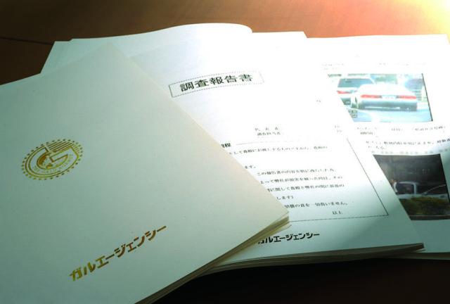 調査報告書